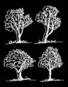 Vektör ağaçların yaprakları ile — Stok Vektör
