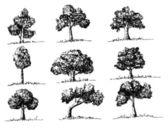 ベクトルの木の葉を持つ — ストックベクタ
