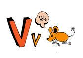 Ruční kreslení vektorové dopisy — Stock vektor