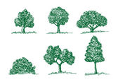 Set of Vector trees with leaves — Stock Vector