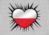 Polská národní vlajka — Stock vektor
