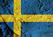 Sweden Flag themes idea design in  illustration — Stock Photo