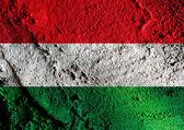 National flag of Hungary themes idea design — Stock Photo