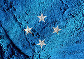 Federated States of Micronesia flag themes idea design — Stock Photo