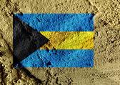 National flag of the Bahamas themes idea design — Stock Photo