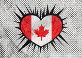Flag of Canada themes idea design on wall texture background  — Stock Photo