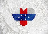 Netherlands Antilles flag themes idea design  on wall texture ba — Stock Photo