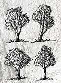trees with leaves  in silhouettes  on wall texture background d — Stock Photo