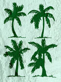 Illustrations silhouette of  palm trees  with leaves  on wall te — Stock Photo
