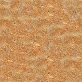 Seamless Toasted - Fried Bread (Toast) Texture — Stockfoto