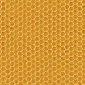 Realistic Seamless Texture of Honeycomb — Stock Photo