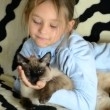 Stock Video: Girl hugging cat