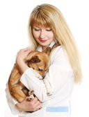 Caring veterinarian — Stock Photo