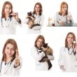 Veterinary doctor — Stock Photo #25369157