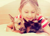 Child and dog and cat — Stock Photo