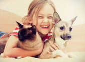 Child hugging a cat and dog — Stock Photo