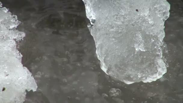 Témpano de hielo flota en el agua — Vídeo de stock