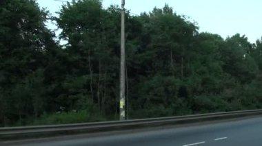 Drewno droga — Wideo stockowe