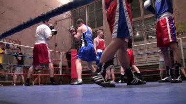 Training of boxers — Stock Video