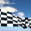 Stock Video: Finish flag