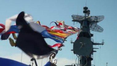Ship's flag — Stock Video