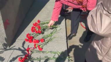 Red carnations on the granite — Stock Video