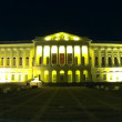 Stock Video: RussiMuseum at night, St. Petersburg, Russia