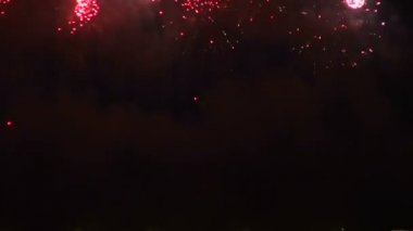 Fireworks in the night sky — Stock Video