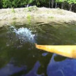 Stock Video: Closeup of rowing oar in water