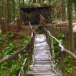 Stock Video: Wooden bridge across the stream in the forest
