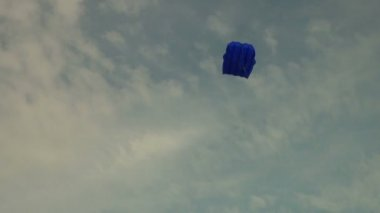 Kite in the sky — Stock Video