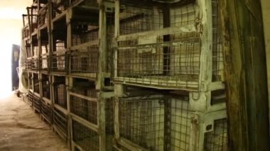 Abandoned empty cages — Vídeo de Stock