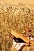 Piknik w kraju — Zdjęcie stockowe