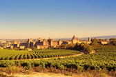 The walled city of Carcassonne, France — Stock Photo