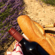 A picnic in Provence — Stock Photo