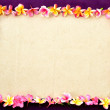 Frame of Asian tropical flowers on purple background — Stock Photo