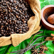 Stock Photo: Coffee beans,spices and Indonesian hand mill