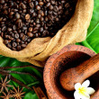 Coffee beans,spices and Indonesian hand mill — Stock Photo