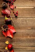 Red ivy leaves with autumn fruit — Stock Photo