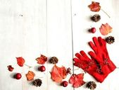 Red gloves with red ivy leaves — Stock Photo