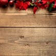 Frame of red poinsettia — Foto Stock