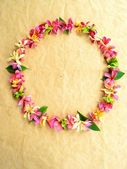 Wreath of Asian tropical flowers — Stock Photo