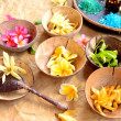 Tropical flowers and Asian spa supplies — Stock Photo #22999856