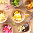 Tropical flowers on coconut bowls - Stock Photo