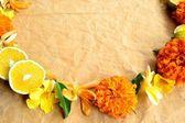 黄色热带花卉与 orange.wreath — 图库照片
