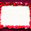 Frame of red hibiscus.exotic dark red background - Stock Photo