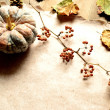 Pumpkin with fall leaves — Stock Photo #29663149