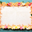 Salmon pink hibiscus with plumeria.frame.sky blue background — Stock Photo