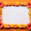 Orange hibiscus with marigold.frame — Foto Stock