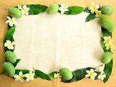 Green mango with plumeria — Foto Stock